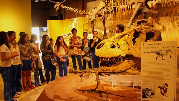 Conhecendo o Museu da PUC Minas